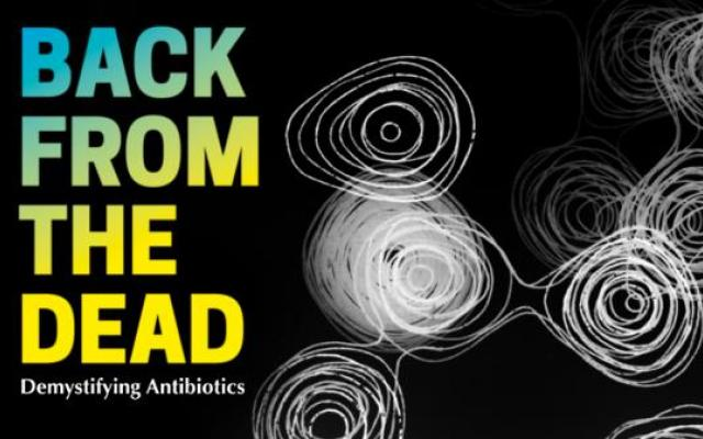 Banner for Museum of the History of Science's exhibition Back from the Dead on penicillin featuring pattern from early penicillin model by Dorothy Hodgkin