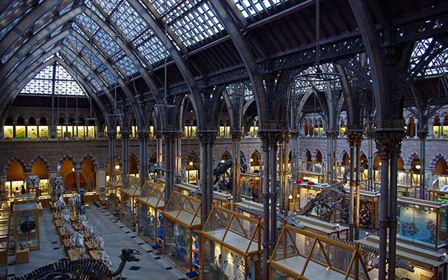 Interior view of the Main Gallery, neo-gothic iron work, Museum of Natural History