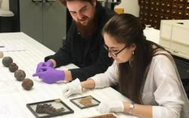 Artists Abigail Booth and Max Bainbridge from Forest + Found working in the Pitt Rivers Museum
