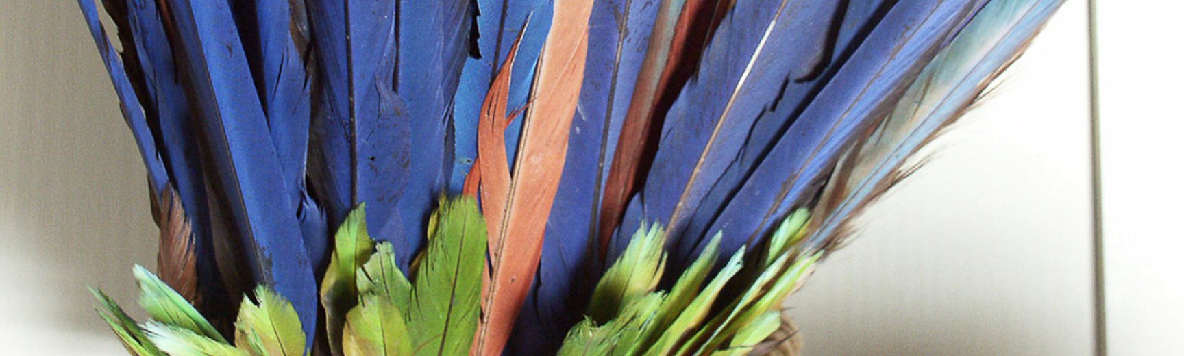 Blue and green feather headdress
