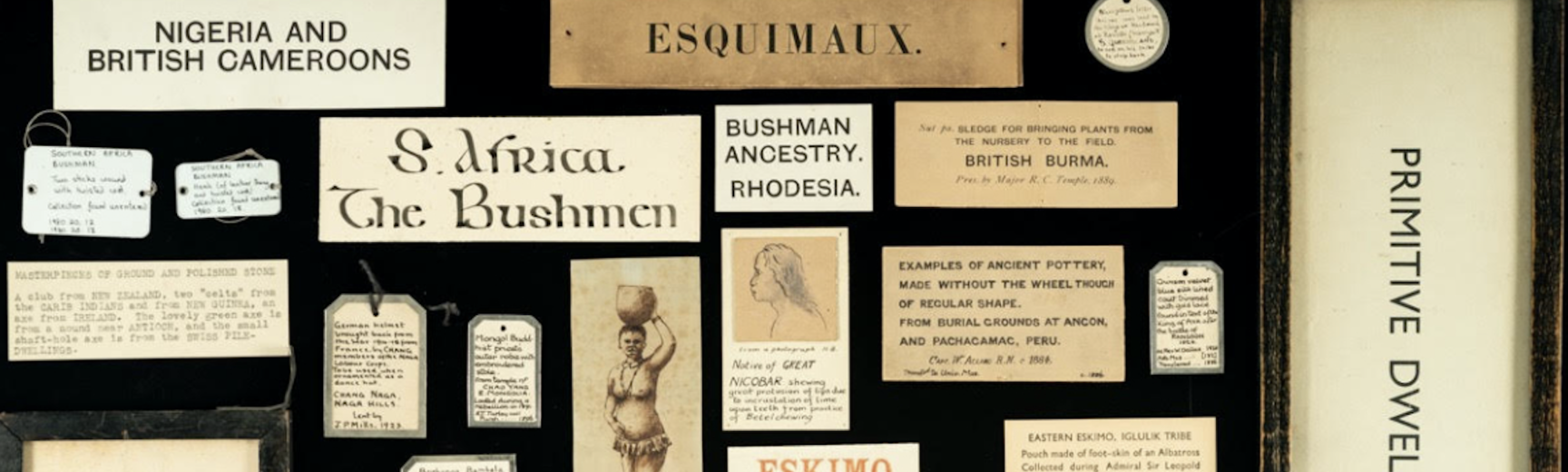 Examples of problematic old labels in the Pitt Rivers Museum