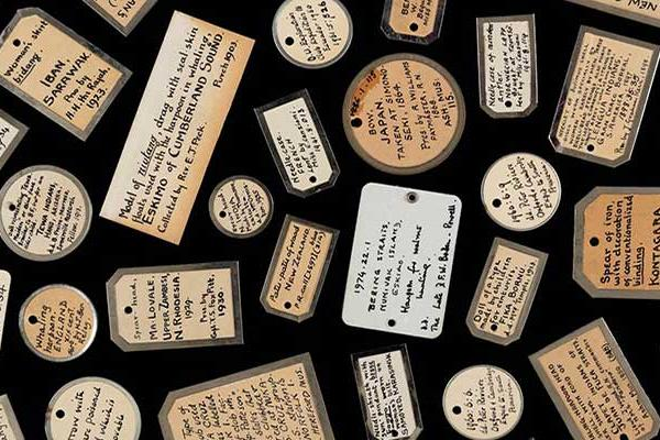 Assortment of Object Labels