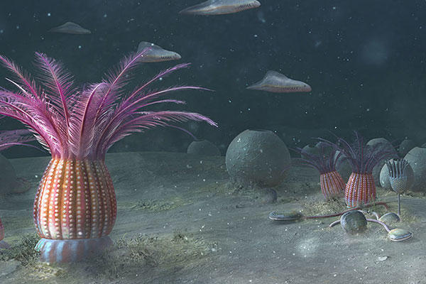 Artist's impression of an Ediacaran sea floor from over 500 million years ago.