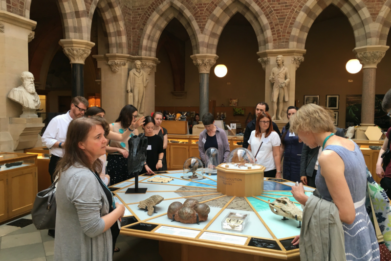 Museum professionals visiting the touch tables with touchable specimens and braille labels at the Museum of Natural History