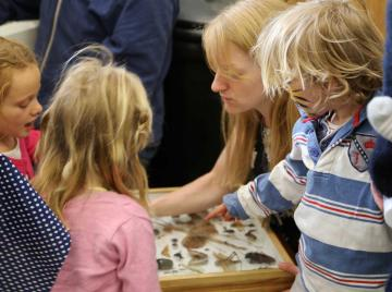 Children handling insects at the Museum of Natural History