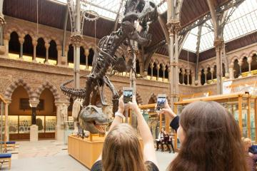 Young people using mobile devices under the T. rex skeleton in the Museum of Natural History