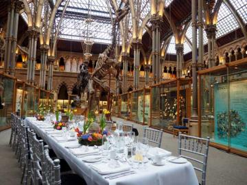 Dining in the main court, Museum of Natural History