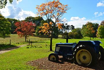 Tractor at Harcourt Arboretum
